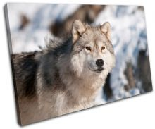 Wolf Wildlife Animals - 13-1058(00B)-SG32-LO